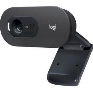 Веб-камера Logitech C505 HD (960-001364)